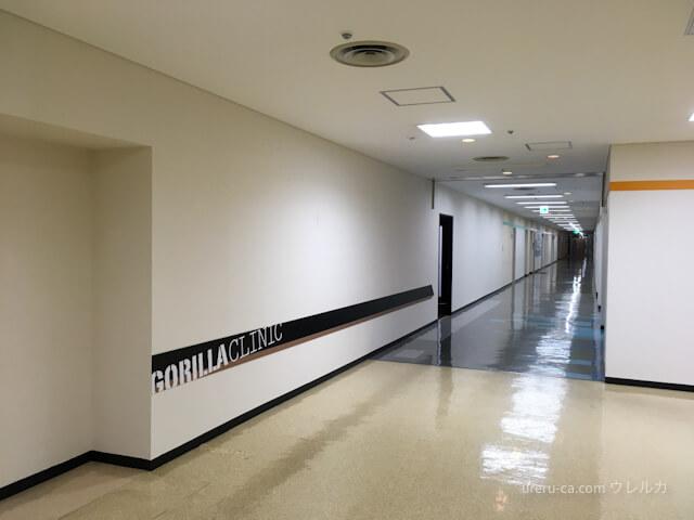 ゴリラクリニック神戸三宮院のフロア